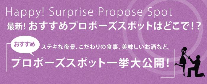 大阪サプライズプロポーズ2014オススメスポット企画